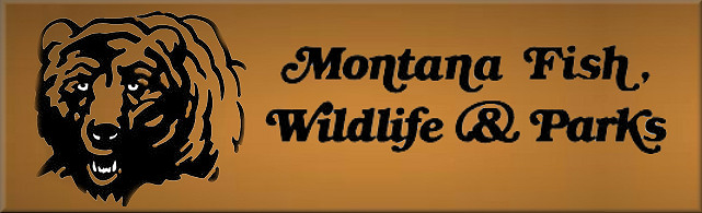 Montana Proposes Another Special CWD Hunt in Sage Creek