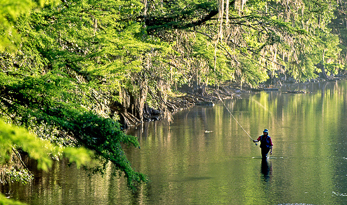 TPWD Announces Opening of Guadalupe River Fishing Leases