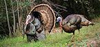 Iowa 2018 General Spring Turkey Hunting Season Opens April 16