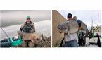 West Virginia Anglers Catch Record Grass Carp, Blue Catfish